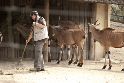 was verdient ein tierpfleger