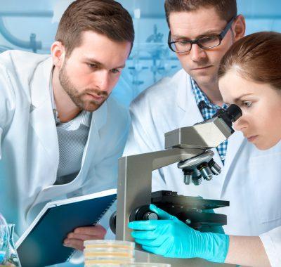 Krebs in gute Zellen verwandeln : Jetzt neuerdings möglich!