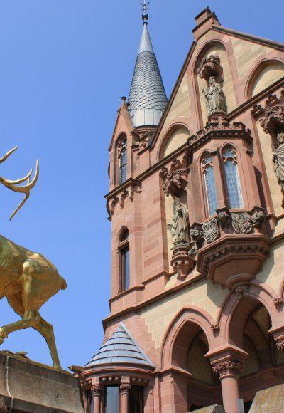 IUBH – Internationale Hochschule Bad Honnef: Empfehlenswert?