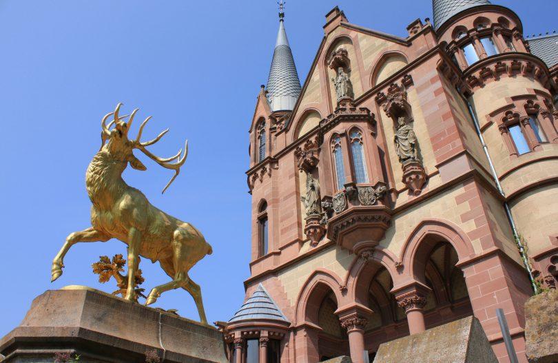 IUBH - Internationale Hochschule Bad Honnef: Empfehlenswert?