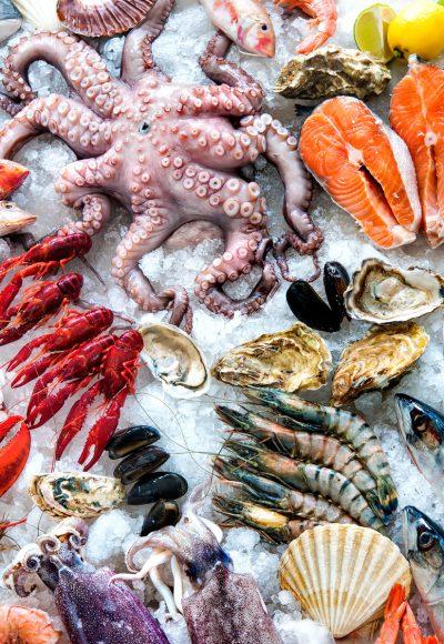 Fischwirt: Ausbildung · Gehalt · Studium · Perspektive