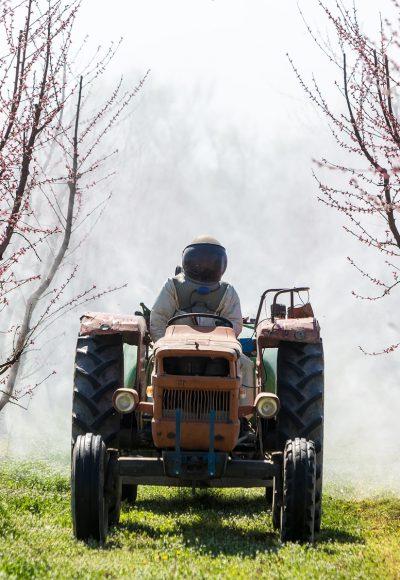 Landwirt: Ausbildung · Gehalt · Studium · Perspektive