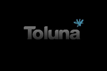 Toluna (Empfehlung)