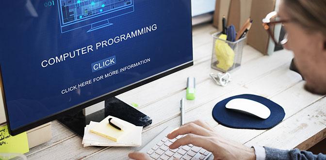 Programmierer und Softwareentwickler