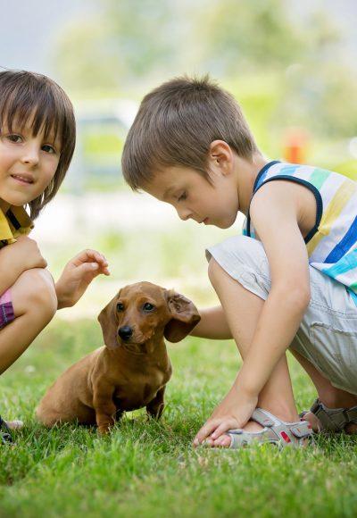 Scharlach bei Kindern: Diese Tipps helfen!