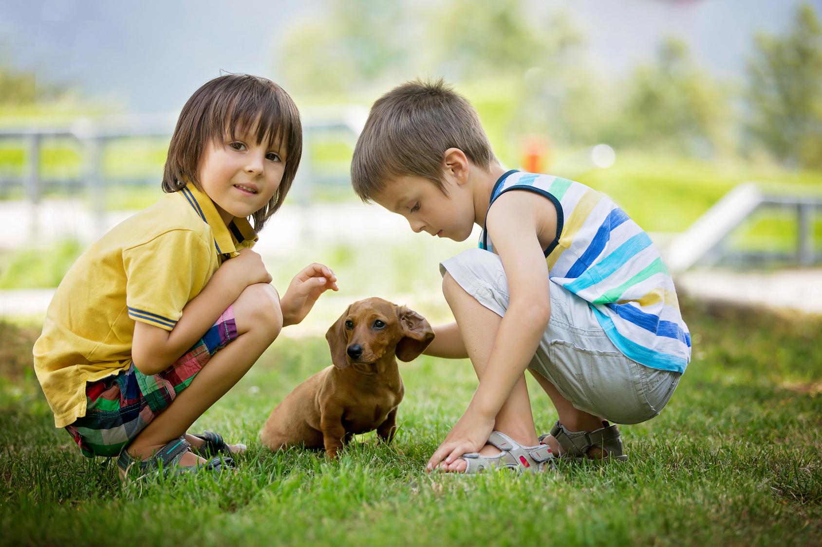 Scharlach Bei Kindern Diese Tipps Helfen Heimarbeit De