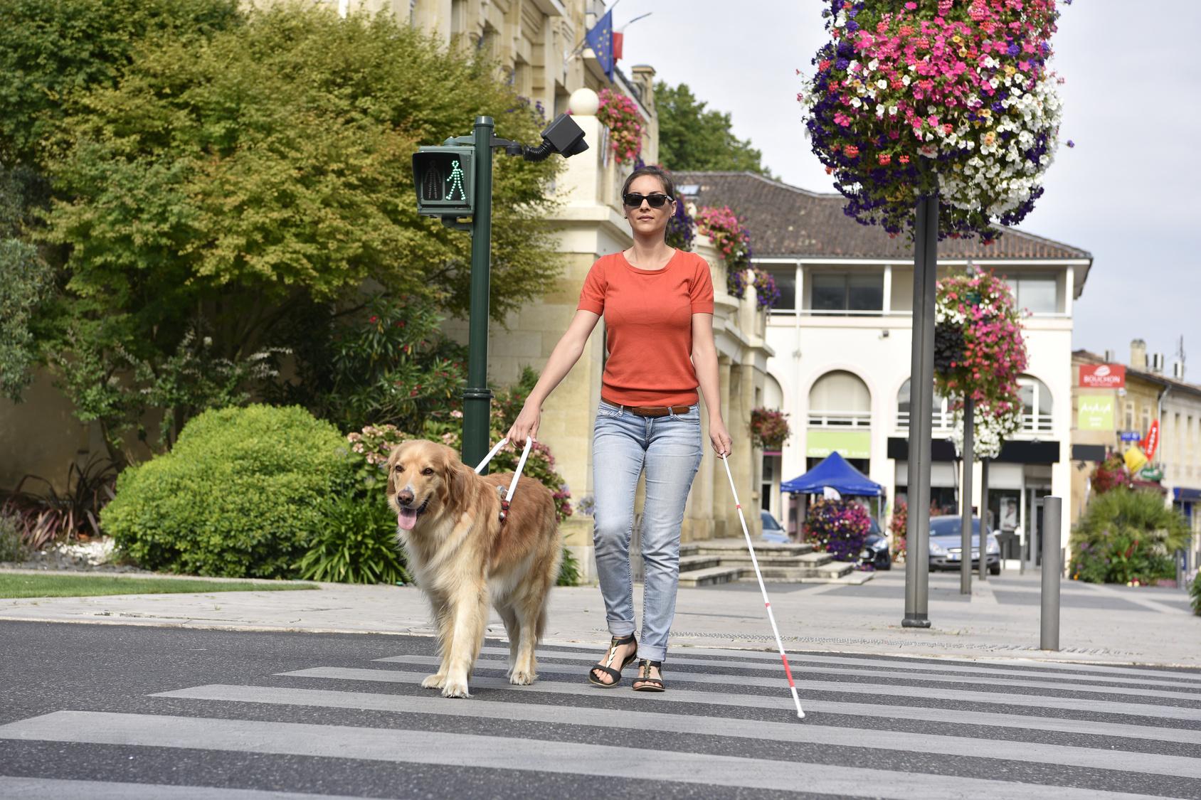 Frau täuscht 28 Jahre lang Blindheit vor