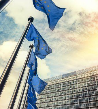 EU-weiter Eier-Skandal: Krisensitzung einberufen!