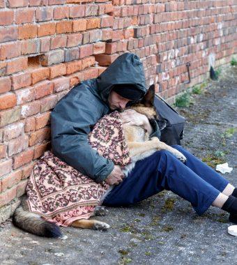 """Obdachloser (58) verzweifelt: Unbekannte entführten seine Hündin """"Hanni""""!"""