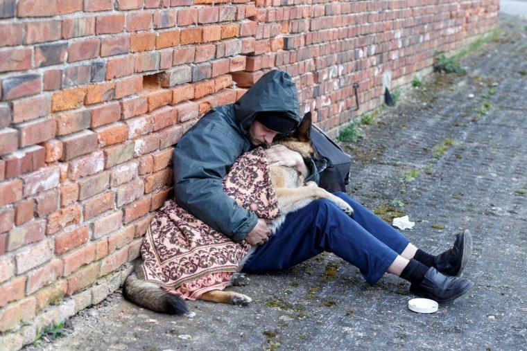 Obdachloser (58) verzweifelt: Unbekannte entführten seine Hündin