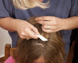 Ihr Kind hat Kopfläuse? So reagieren Sie richtig!