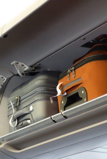 Er musste ins Gepäckfach: Welpe verstirbt auf Flug elendig!